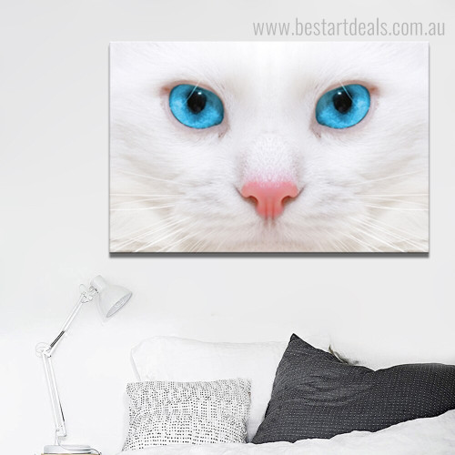 White Moggy Animal Contemporary Framed Painting Photo Canvas Print for Room Wall Decoration