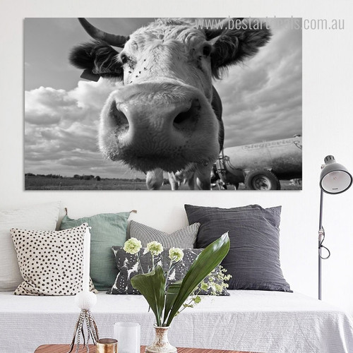 Neat Face Nature Animal Framed Painting Picture Canvas Print for Living Room Wall Moulding