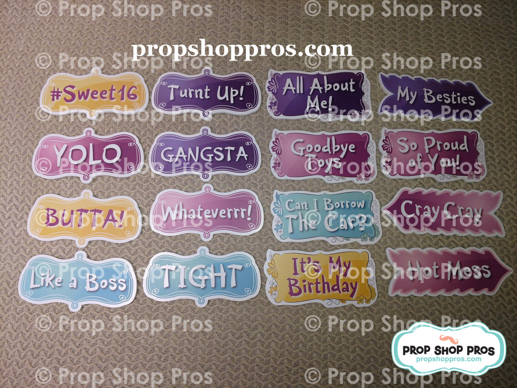 Sweet 16 (Sixteen) Signs | Photo Booth Props | Prop Signs