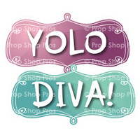 Prop Shop Pros Sweet Sixteen Photo Booth Props Yolo & Diva