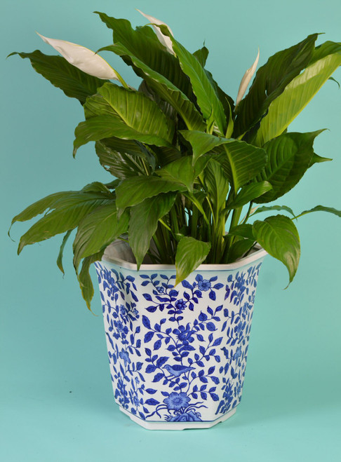 Blue and White Aviary Garden Planter - Large