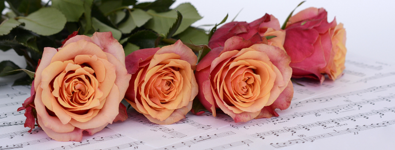 Make Opera Your Valentine 2021