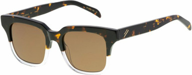 Tide - Tort and Clear/Brown Polarised Lenses