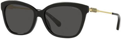 8305F - Black/Grey Lenses