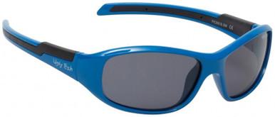 Blue/Smoke Polarised Lenses