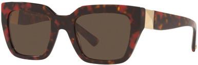 Red Havana/Brown Lenses