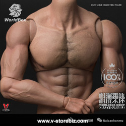 Worldbox  AT027 Male Durable Muscular Body