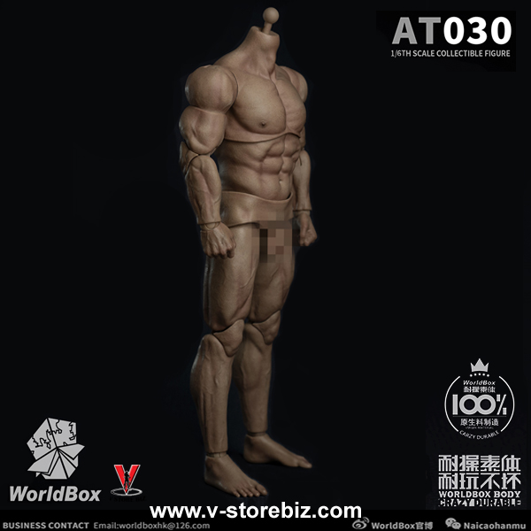 Worldbox AT030 Durable Muscular Male Body
