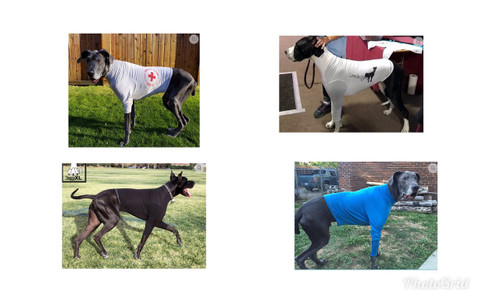 DoggyXL T-Shirt Fits Custom Made for Great Danes - Keep warm - Form Fitting