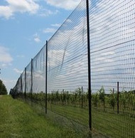 How to Install Your Deer Fence