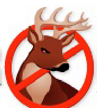 The History of DeerBusters