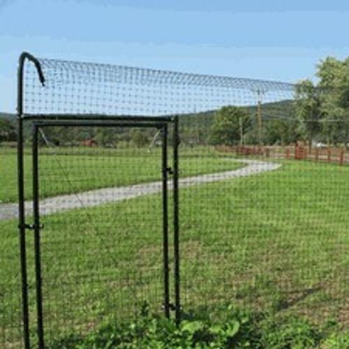Cat Fence Gates