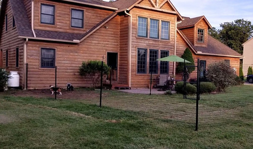 4' High Poly Dog Fence Kit