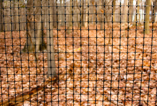 """6' x 100' Trident Multi-Purpose Fence 1"""" x 1"""" Mesh with Reinforced Bottom - Black"""