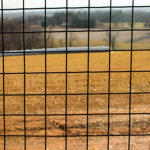 """7' x 100' Welded Wire Fence-14 ga. galvanized steel core;12 ga after Black PVC-Coating, 2"""" x 2"""" Mesh"""