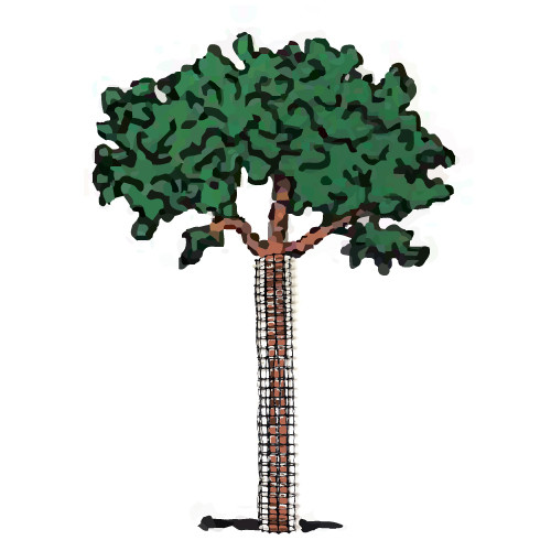 2' Sturdy Poly Mesh Bark and Tree Guard (5 Pk)