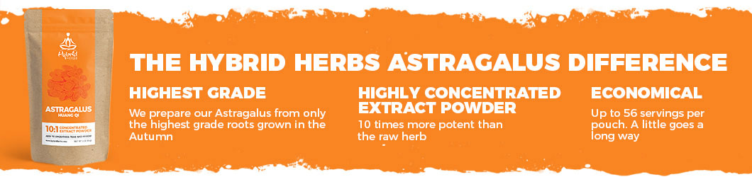 astragalus-powder-extract-difference.jpg