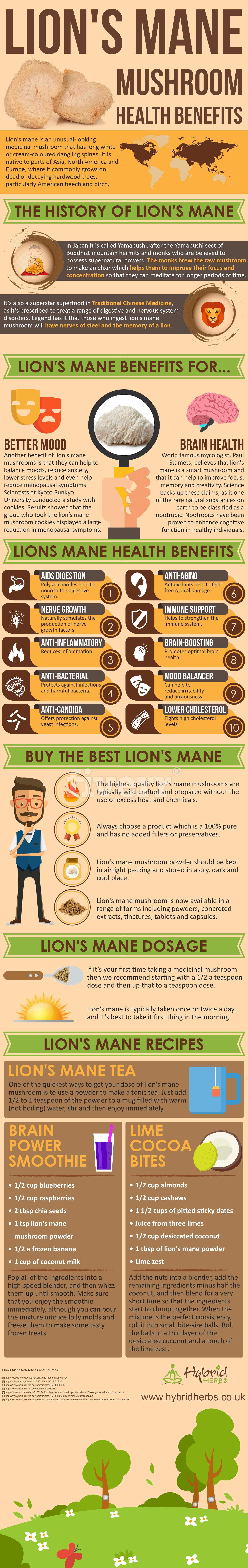 lions-mane-mushroom-health-benefits.jpg