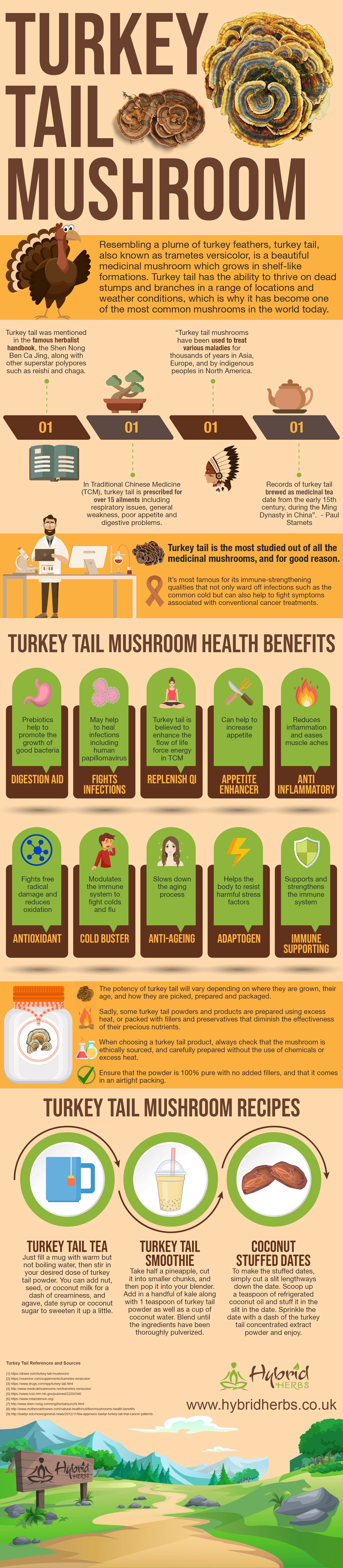 turkey-tail-mushroom-benefits.jpg
