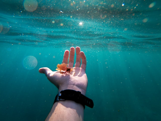 An underwater view of a scuba diver's hand