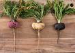 Organic Raw Sundried 3 Color Maca Capsules  - Vegan, 750mg, 200 ct.