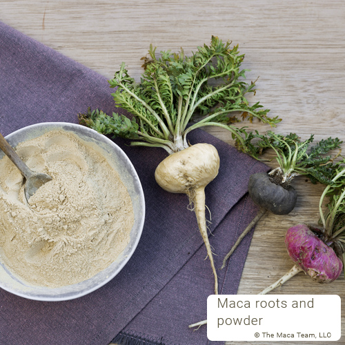 best maca roots and powder