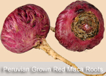 peruvian-red-maca-root