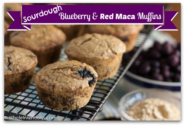 sourdough-blueberry-red-maca-muffins.jpg