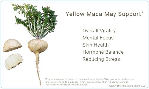 Yellow Maca Benefits