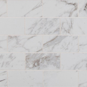MS International Backsplash Series: Pietra Carrara 2X4 Polished Subway Tile NPIECAR2X4P