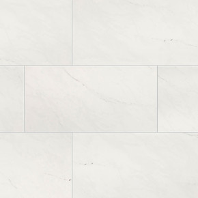 MS International Aria Series: 24x24 Ice Polished Porcelain Tile NARICE2424P