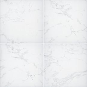 MS International Pavers Series: 12x24 Praia Carrara Arterra Polished Porcelain Tile NPRACAR1224P