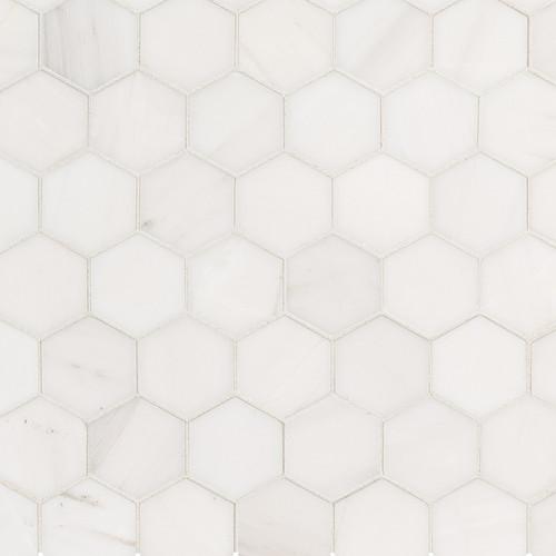 MS International Specialty Shapes Wall Series: Bianco Dolomite 2X2 Hexagon Polished Mosaic Tile SMOT-BIANDOL-2HEXP