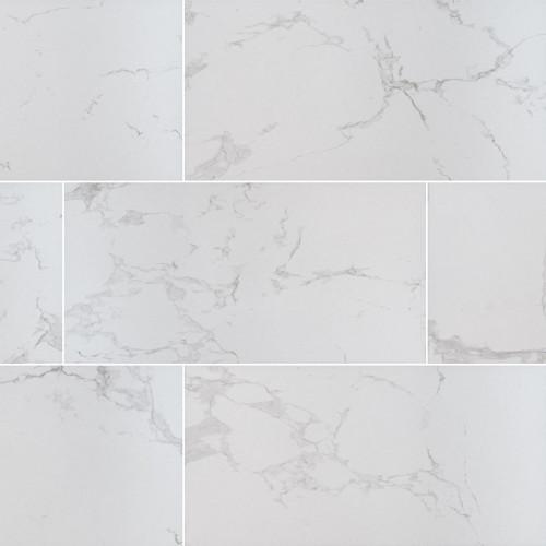 MS International Praia Series: Carrara 12X24 Matte Porcelain Tile NPRACAR1224