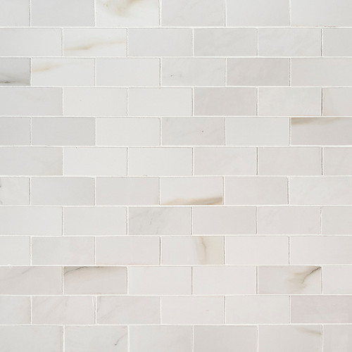 MS International Backsplash Series: Aria Bianco 2X4 Polished Mosaic Subway Tile NARIBIA2X4P