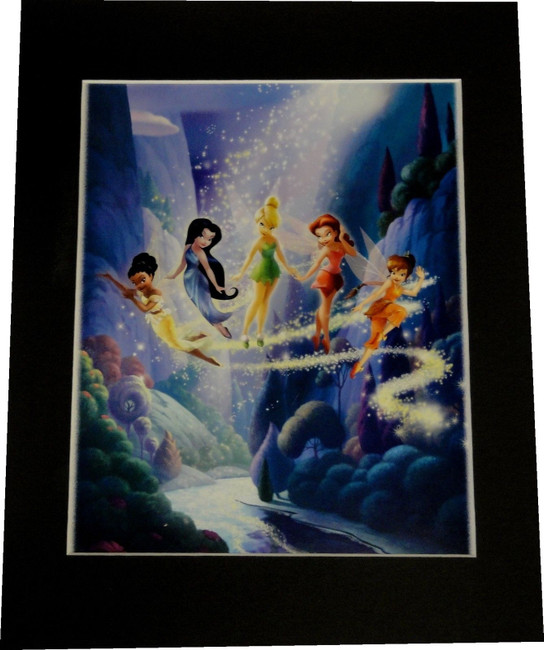 Disney Fairies 8x10 Custom  Matted Photo Gorgeous Color