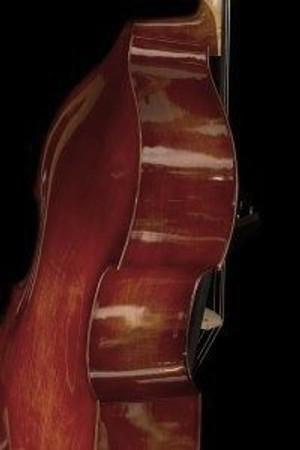 Estle Louis Laminated Bass, body