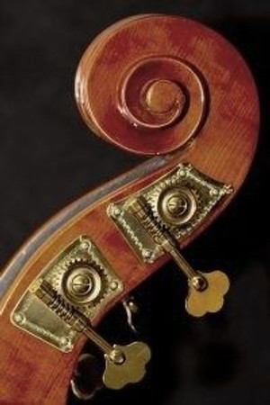 Estle Louis Laminated Bass, scroll