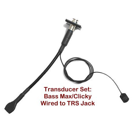 Individual Components for the Bass Master Rockabilly Systems - Transducer Set