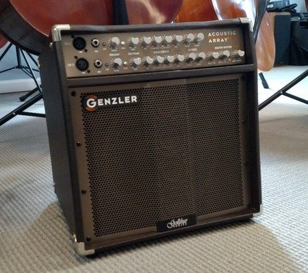 Gollihur Series Bass Acoustic Array Pro Amplification (Exclusive), combo amp
