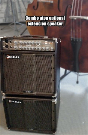 Gollihur Series Bass Acoustic Array Pro Amplification (Exclusive), combo amp and extension speaker