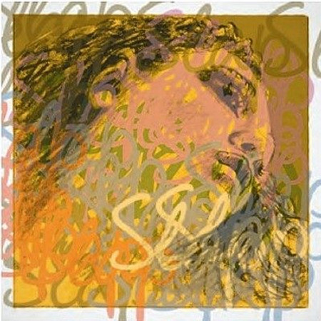 Evah Pirazzi Gold/Slap Upright Bass Strings