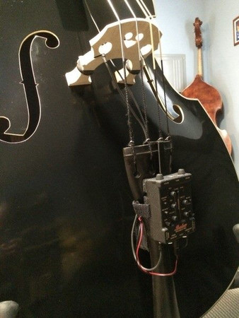 Estle Louis 'Ed' - Our Complete Rockabilly Bass PACKAGE,  pickup system