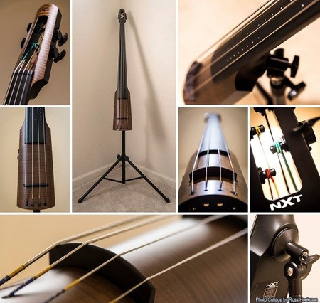 SPECIAL EDITION Gollihur Exclusive NXTa Active Traditional Bass by NS Design, stand options