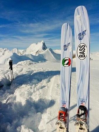 BASS oval logo, vinyl decorative sticker, on skis