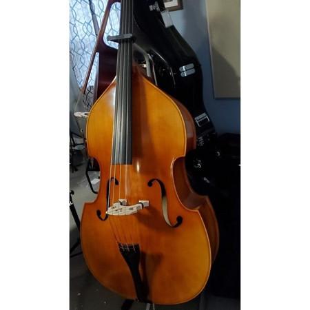 Estle Louis Hybrid Double Bass - Front