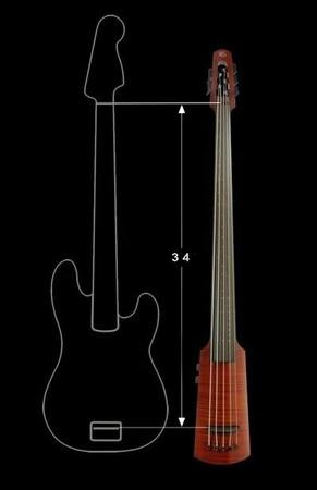 NS Design WAV series OmniBass comparison shot to bass guitar