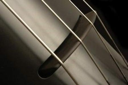 NXTa Electric Upright Bass, Black bridge closeup