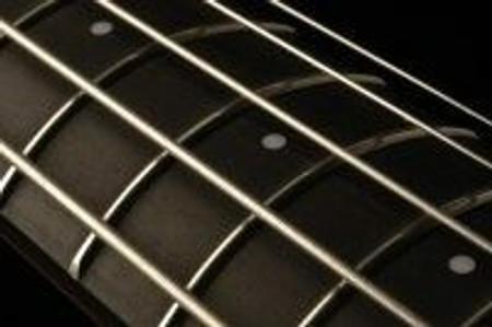 OMNI Bass by NS Design (CR Series) - Fretted 5-string - frets closeup
