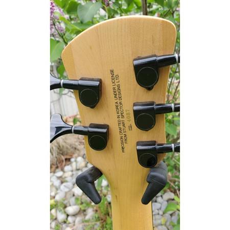 Spector SpectorCore 5 Electric Bass Guitar, headstock rear